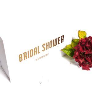 Motto Junggesellinnenabschied Schachtel Bridal Shower